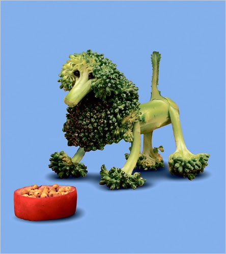 Animals made of fruits and vegetables fuzzy today