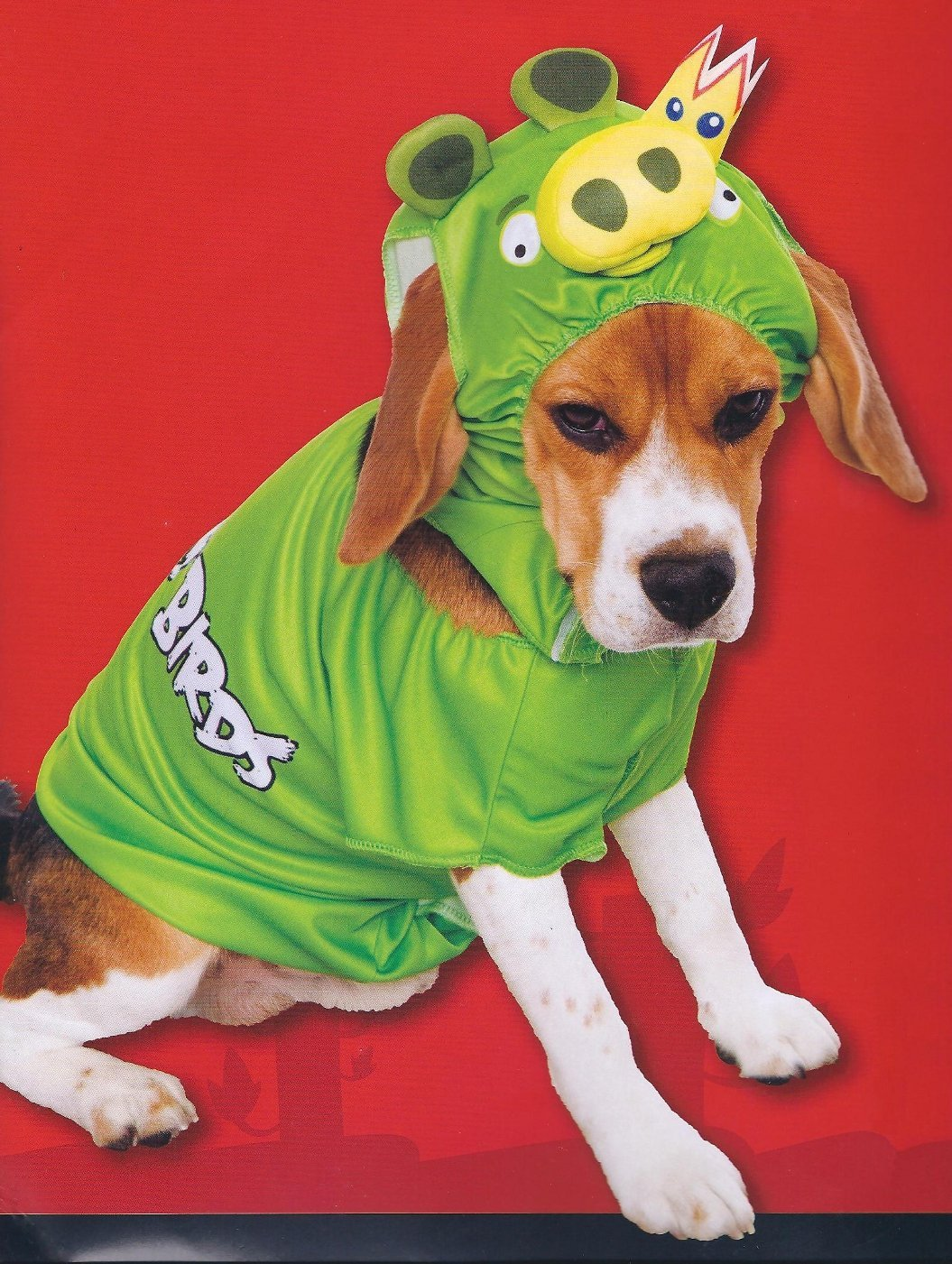 Top 10 dog costumes you can buy at the store fuzzy today 81li2nt53dlsl1401 solutioingenieria Choice Image
