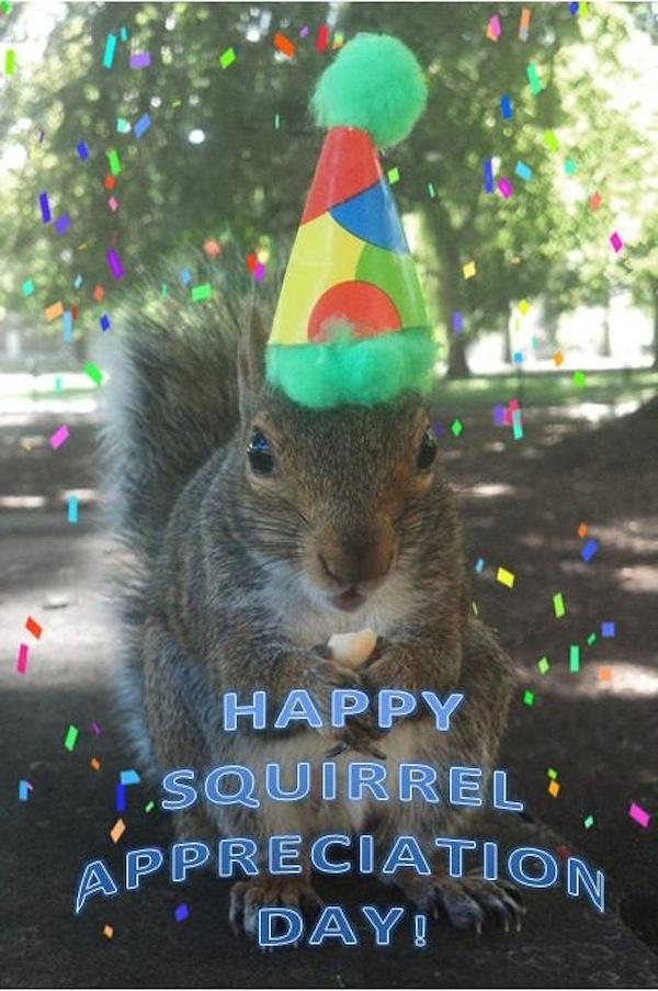Penn-State-Squirrels-04