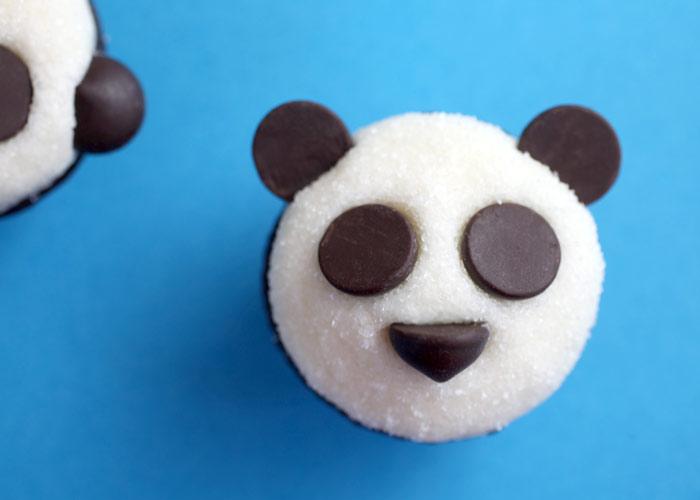 Panda Cupcakes Fuzzy Today