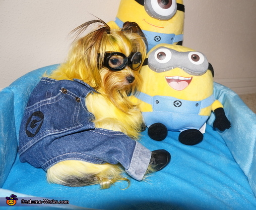 minion_from_despicable_me