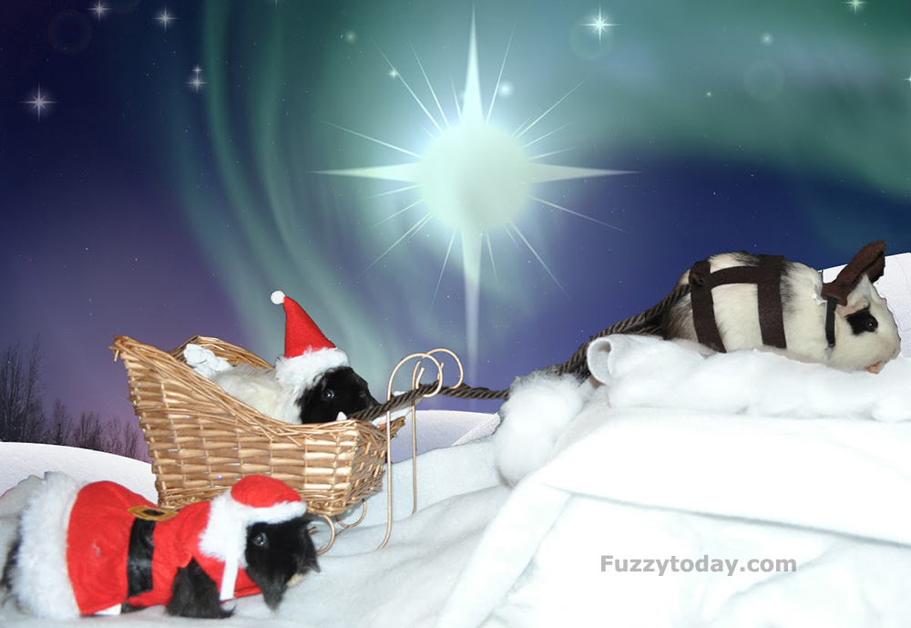 Christmasmallft