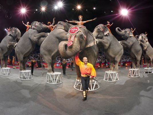 635611398239797109-AP-RINGLING-BROS-BARNUM-BAILEY-JINGLE-CONTEST-70345356